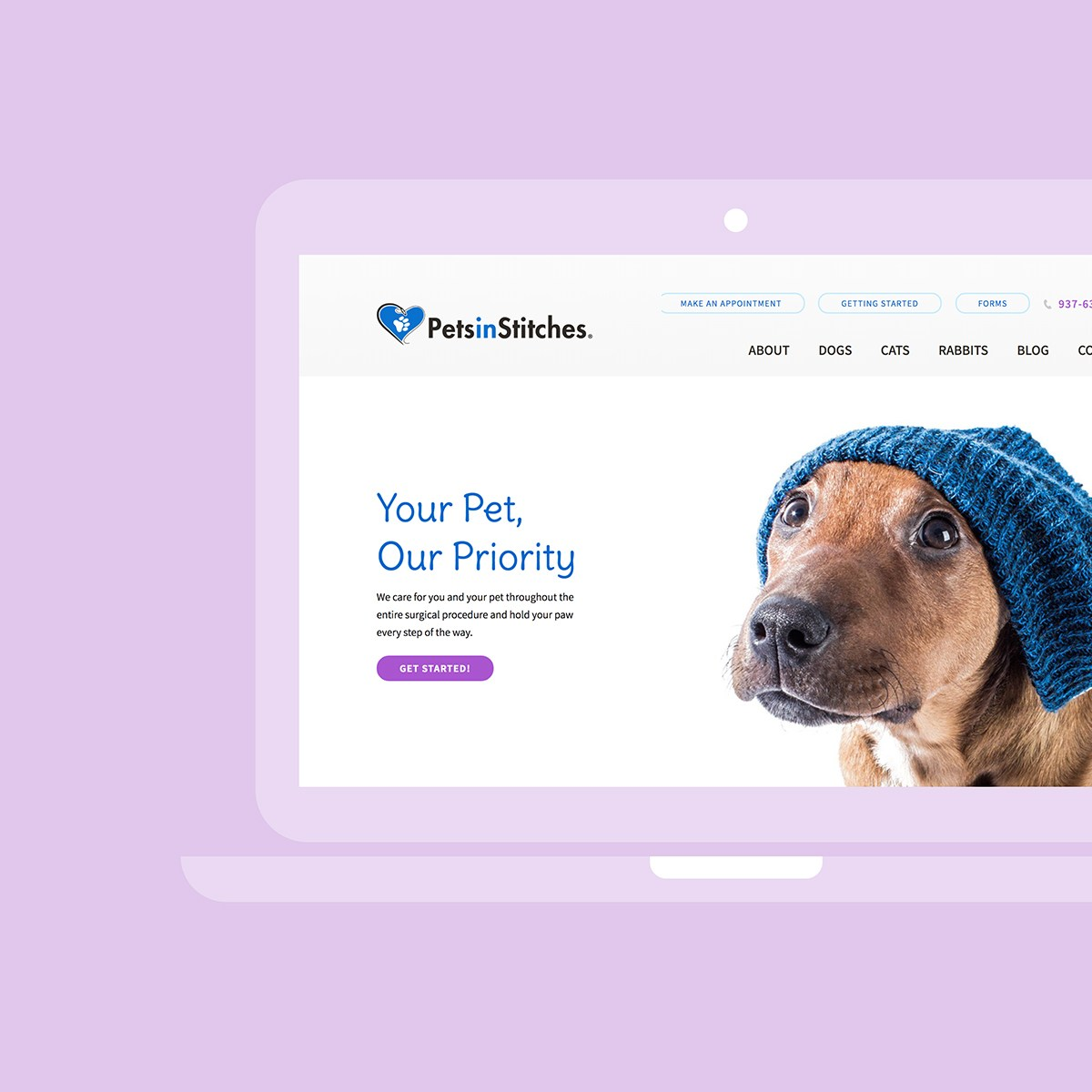 A screenshot of petsinstitches.com homepage