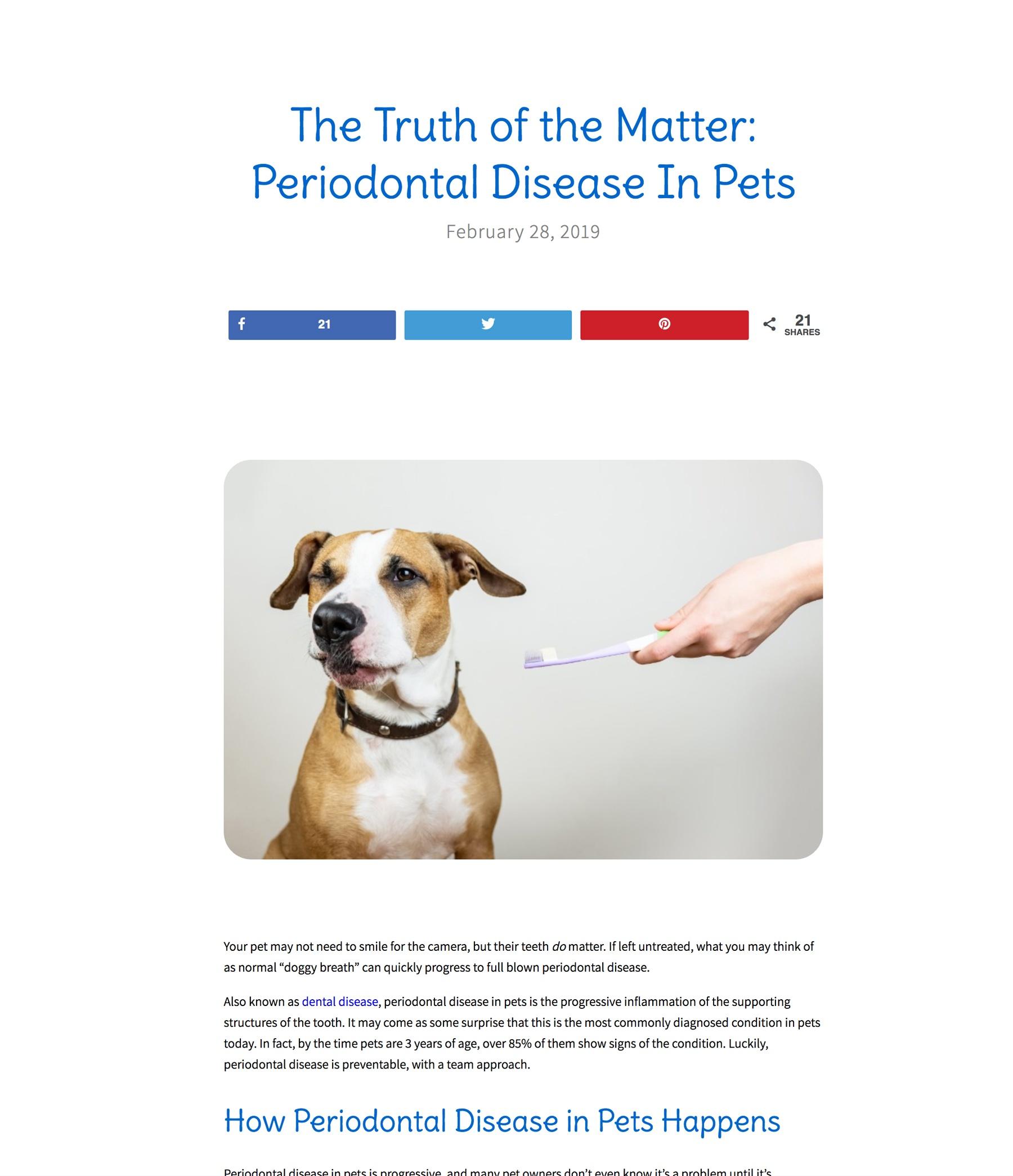 A screenshot of the blog user interface